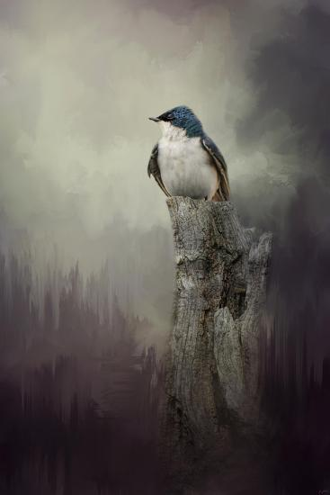 Resting Tree Swallow-Jai Johnson-Giclee Print
