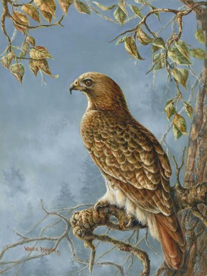 Retail Hawk-Wanda Mumm-Giclee Print