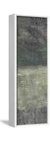 Reticulation II-Chariklia Zarris-Framed Stretched Canvas Print