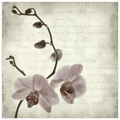 Retro Orchid--Art Print