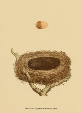 Antique Nest and Egg III by Reverend Francis O^ Morris