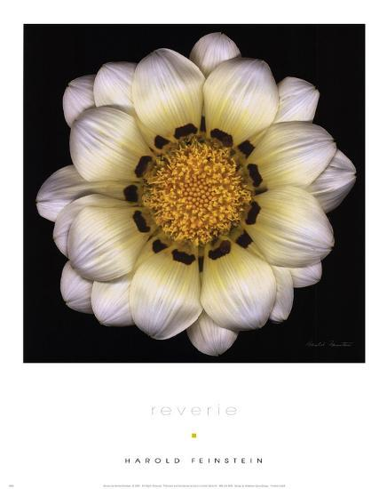 Reverie-Harold Feinstein-Art Print
