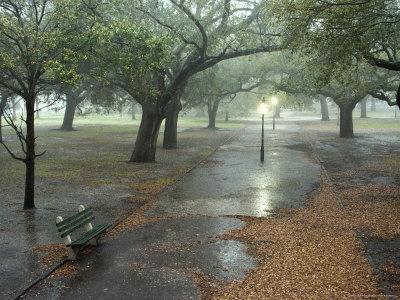 Rain Softly Falls on White Point Gardens
