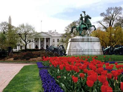 View of the White House From Lafayette Park