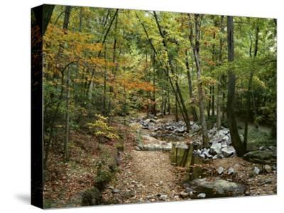 Woodland View at Long Branch Nature Center