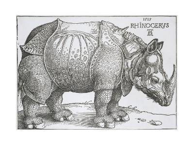 Rhinoceros, 1515-Albrecht Durer-Giclee Print