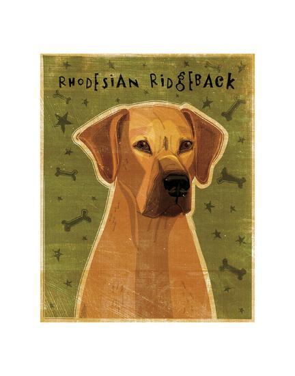 Rhodesian Ridgeback-John W^ Golden-Art Print