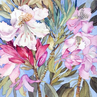 Rhododendron I-Sharon Pitts-Giclee Print
