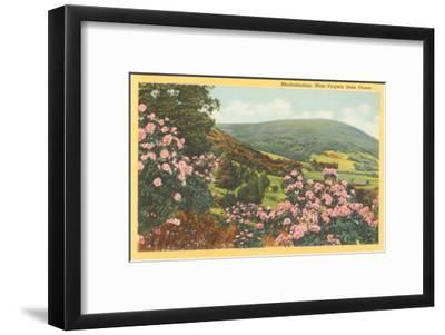 Bedroom Art French Country Decor Pastel Wall Art Flower Photography Pink Azalea Print