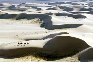 Gobi Desert by Ria Novosti