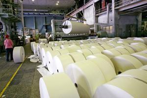 Paper Mill by Ria Novosti