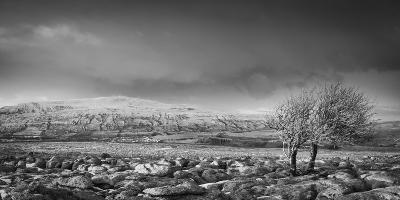 Ribblehead Viaduct-Nick Ledger-Photographic Print