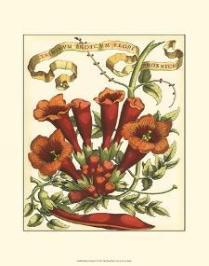Ribbon Florals IV
