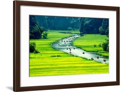 Rice Field and River, Ninhbinh, Vietnam Landscapes-John Bill-Framed Photographic Print