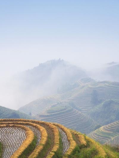 Rice Growing on Terraced Fields on Mountain Slopes-Keren Su-Photographic Print