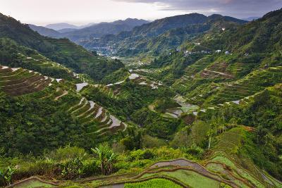Rice Terraces, Agriculture, Philippine Cordilleras, Banaue, Ifugao, Philippines-Keren Su-Photographic Print
