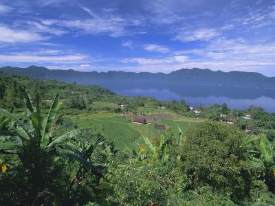 Rice Terraces on Eastern Shore of Crater Lake, Lake Maninjau, West Sumatra, Sumatra, Indonesia-Robert Francis-Photographic Print