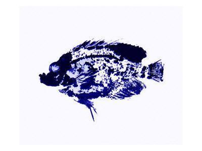 Blue Dapple Fish Print