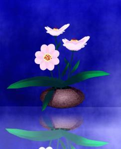 Floral Arrangement of Orchid in Vase Partly Reflected by Rich LaPenna