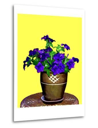 Petunia Against Yellow Background