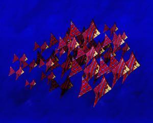 School of Blue Stripe Angel Fish by Rich LaPenna