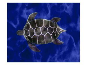 Seaturtle in Deep Blue Water by Rich LaPenna