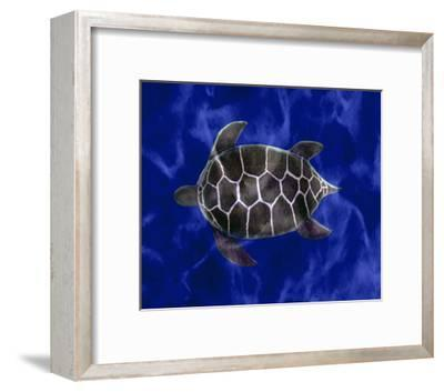 Seaturtle in Deep Blue Water