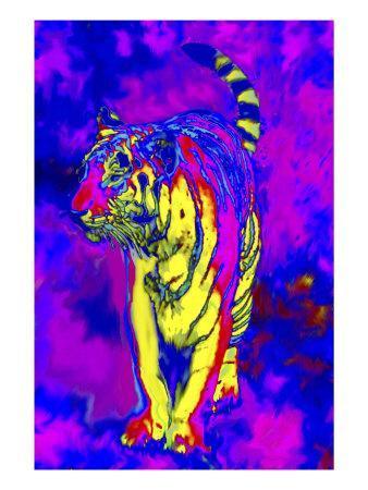 Tiger Endangered Species