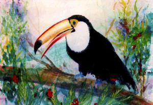 Toucan Sits on Large Branch by Rich LaPenna