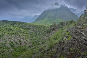 From Kauhako Crater Looking Back to North Shore, Molokai, in Kalaupapa Settlement, Molokai, Hawaii by Richard A Cooke III