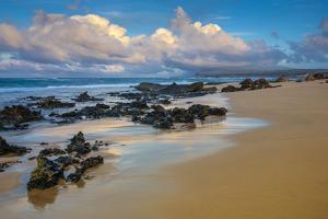Sandy Shore at Kaehu Point, Mo'Omomi Beach, Nature Conservancy, Molokai, Hawaii by Richard A Cooke III