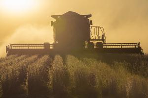 Farmer Harvesting Soybeans at Sunset, Marion County, Illinois by Richard and Susan Day