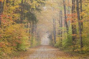 Road in Fall Color Schoolcraft County Upper Peninsula, Michigan by Richard and Susan Day