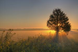 Sunrise at Prairie Ridge State Natural Area, Marion County, Illinois by Richard and Susan Day