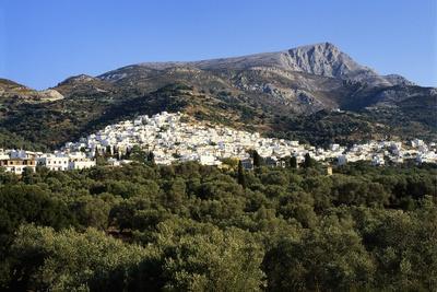 Filoti in Olive Groves, Tragea, Naxos, Cyclades, Greece