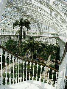 Interior of the Temperate House, Restored in 1982, Kew Gardens, Greater London by Richard Ashworth