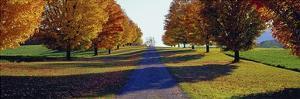Autumn Road, Storm King Mountain, New York by Richard Berenholtz