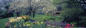 Country garden, Old Westbury Gardens, Long Island by Richard Berenholtz