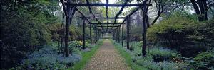 Garden path, Old Westbury Gardens, Long Island by Richard Berenholtz