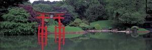 Japanese Garden by Richard Berenholtz