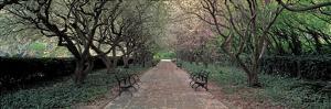 Through Conservatory Garden, Central Park, NYC by Richard Berenholtz