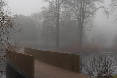 Royal Botanic Gardens, Kew, London. the Sackler Crossing in Fog with Winter Trees