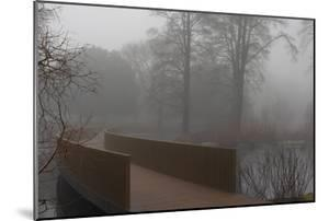Royal Botanic Gardens, Kew, London. the Sackler Crossing in Fog with Winter Trees by Richard Bryant