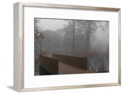 Royal Botanic Gardens, Kew, London. the Sackler Crossing in Fog with Winter Trees