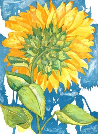 Sunflower no. 1