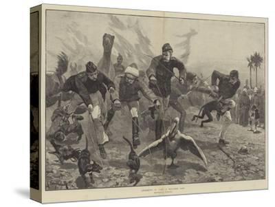Amusements in Camp, a Menagerie Race