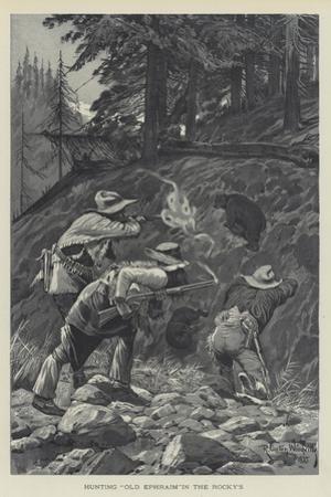 Hunting Old Ephraim in the Rocky's