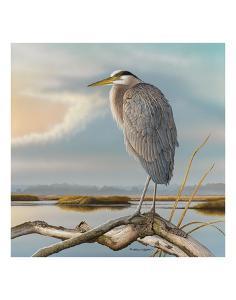 Marsh Watch - Great Blue Heron by Richard Clifton
