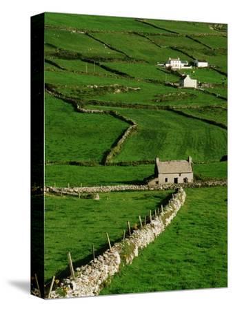 Abandoned Farmhouse in the Irish Countryside