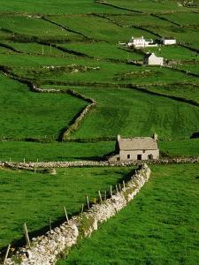 Abandoned Farmhouse in the Irish Countryside by Richard Cummins
